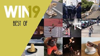 WIN Compilation Best of 2019 (Videos of the Year)