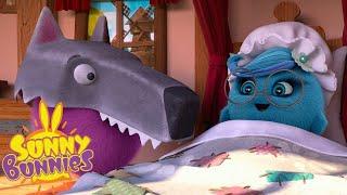 SUNNY BUNNIES | PELÍCULA SOLEADA | Dibujos animados para niños | WildBrain