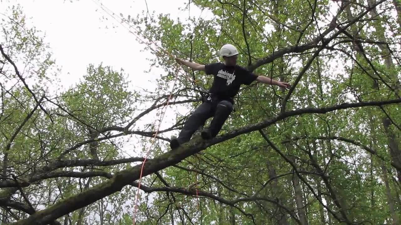 Branchwalking Basic Tree Climbing Techniques Youtube