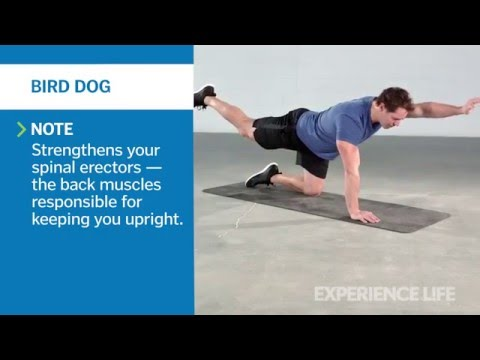 The Workout: Strengthen Your Back