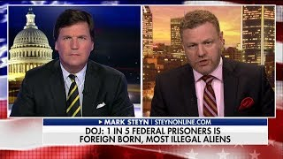 Steyn: We Weren't Told the Truth About Illegal Immigrant Crime Because of Political Correctness