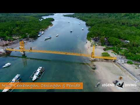 World Class Diving Spot - Nusa Lembongan