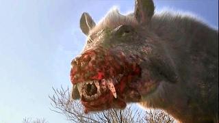 Thế Giới Động Vật | Lợn ăn thịt Quái Vật Sát Thủ thời tiền sử - Thuyết minh