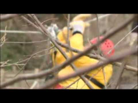 ArborTrek Canopy Adventures at Smugglers' Notch - SmuggsTV Promo for Arbor's Express