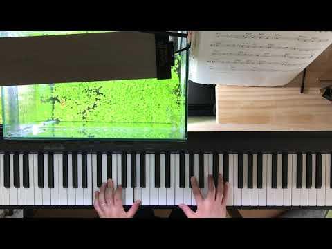バットノットフォーミー BUT NOT FOR ME 簡単なことしかせずに弾く  アドリブなし(初心者) ジャズソロピアノ  黒本の曲を弾く