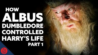 Dumbledore's BIG Plan: The Philosopher's Stone [Harry Potter Theory]