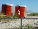 girls en tangas, bikinis en la playa