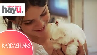 Kendall Hides Her New Puppy From Her Father | Season 1 | Keeping Up With The Kardashians