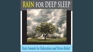 Relaxing Rain for Deep Sleep