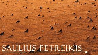 Saulius Petreikis - Saulę pasitinkant