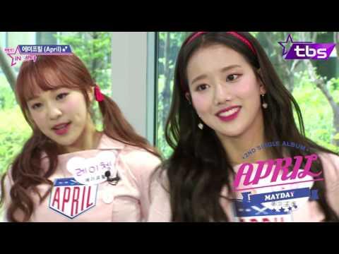 April Cover Dance -  IOI Apink KARA & 따끔 - 팩트iN스타