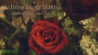 Lyric - Nụ Hồng Mong Manh [Rap version] Jombie ft Sâu × Pord -Tam Ke