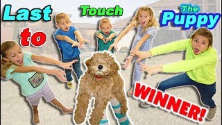 Last To Touch The CUTE PUPPY WINS!!