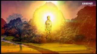 PHÁP SƯ HUỆ TỊNH Giảng về Niệm Phật