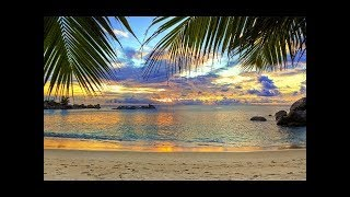 Relaxing Music and Nature Sounds    and HD 1080p Videos