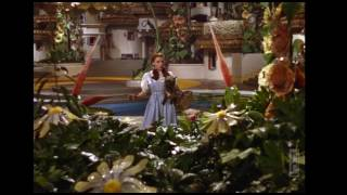 """Toto, we're not in Kansas anymore...  """"The Wizard of Oz"""" (1939)"""