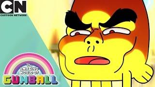 The Amazing World of Gumball | Telling Lies | Cartoon Network