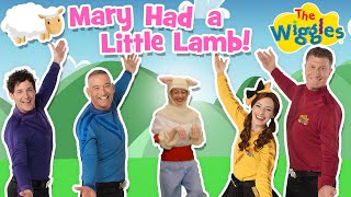 The Wiggles: Mary Had a Little Lamb | The Wiggles Nursery Rhymes 2