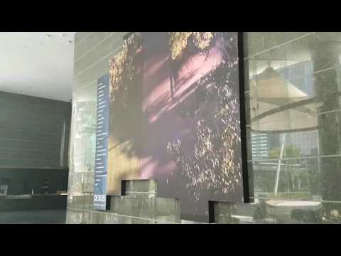 Indoor LED Screens | Large LED Screens | Big Screen Video