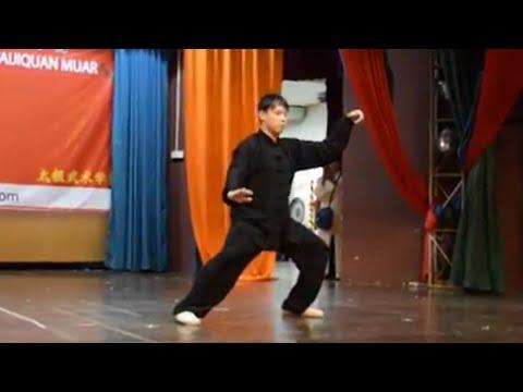 Chen Style Taiji Xinjia Yilu - 张超然