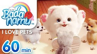 I Love Pets | Badanamu Compilation