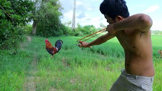 Hunting Wild Chicken then Cooking Two Chicken in Forest
