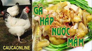 Steamed chicken - Gà Hấp Nước Mắm Cà Mau
