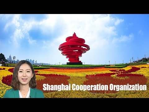 Qingdao: A thriving coastal city