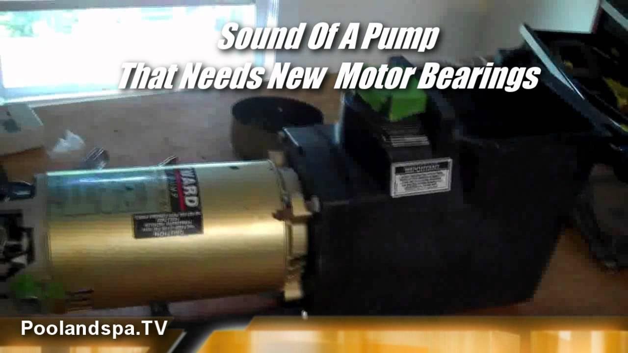 hayward super pump motor bearing change poolandspa tv. Black Bedroom Furniture Sets. Home Design Ideas