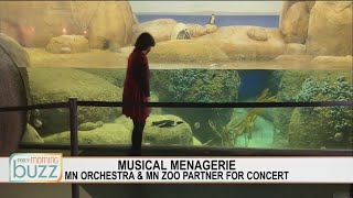 Minnesota Orchestra partners with the Minnesota Zoo for a wild concert | FOX 9 Morning News