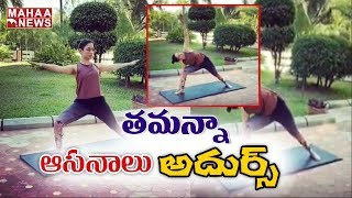 Tamanna Fitness Yoga Photos Hulchul In Social Media..