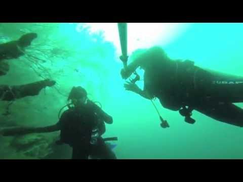 Bitácora de inmersión … Explorando Punta Negra y experimentando con corrientes medianas … 12 14 2014