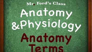 Introduction To Anatomy Physiology: Anatomy Terms (01:02)