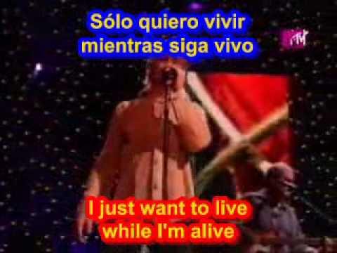 Baixar Bon Jovi It's my life ( SUBTITULADO INGLES ESPAÑOL )