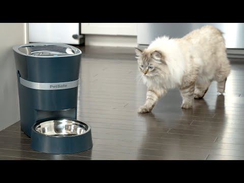 Make sure your pet is fed on time, every time with the new PetSafe® Smart Feed Automatic Pet Feeder. This new feeder connects to your Wi-Fi and allows you to set a meal schedule, feed instantly, view recent activity, and monitor your pet's meals from wherever you are.