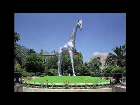 Jet Set Giraffe