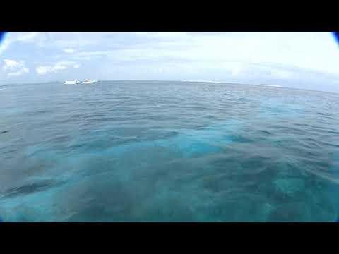 【癒やしBGM】快眠、疲労回復バンド、 BEGINと過ごす沖縄オーシャンウィークエンド! ~癒しの「Ocean Line」