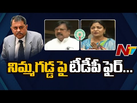 TDP slams Nimmagadda for not allowing to raise unanimous, poll fraud issues in all-party meet
