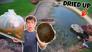 Rescuing/Re-Homing Turtles, Goldfish, and Minnows?! (RESCUE MISSION IN DRIED UP POND)