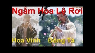 Ngắm Hoa Lệ Rơi ★ Hoa Vinh, Châu Khải Phong | Đông Tà Hoàng Dược Sư Remix - Master of Flute