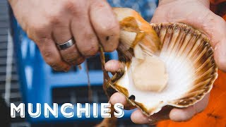 From Sea to Table: The MUNCHIES Guide to Norway (Part 1)