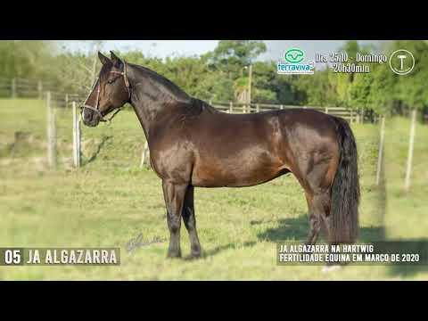 LOTE 05 - JA ALGAZARRA