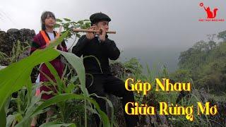 Gặp Nhau Giữa Rừng Mơ   A Mao H'Mông Flute