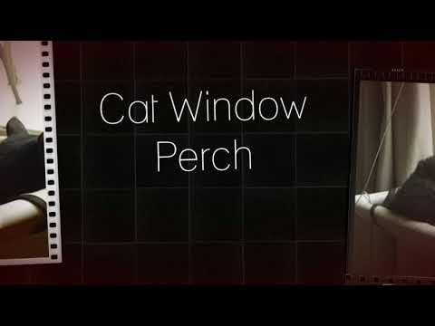 Fortable cat window perch  Free shipping on all orders