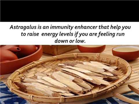 Incredible Benefits of Astragalus Root for Health and Beauty