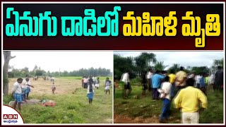 Woman trampled to death by elephant in Andhra Pradesh..