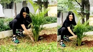 Shruti Hassan accepts Mahesh Babu's 'Green India' challeng..
