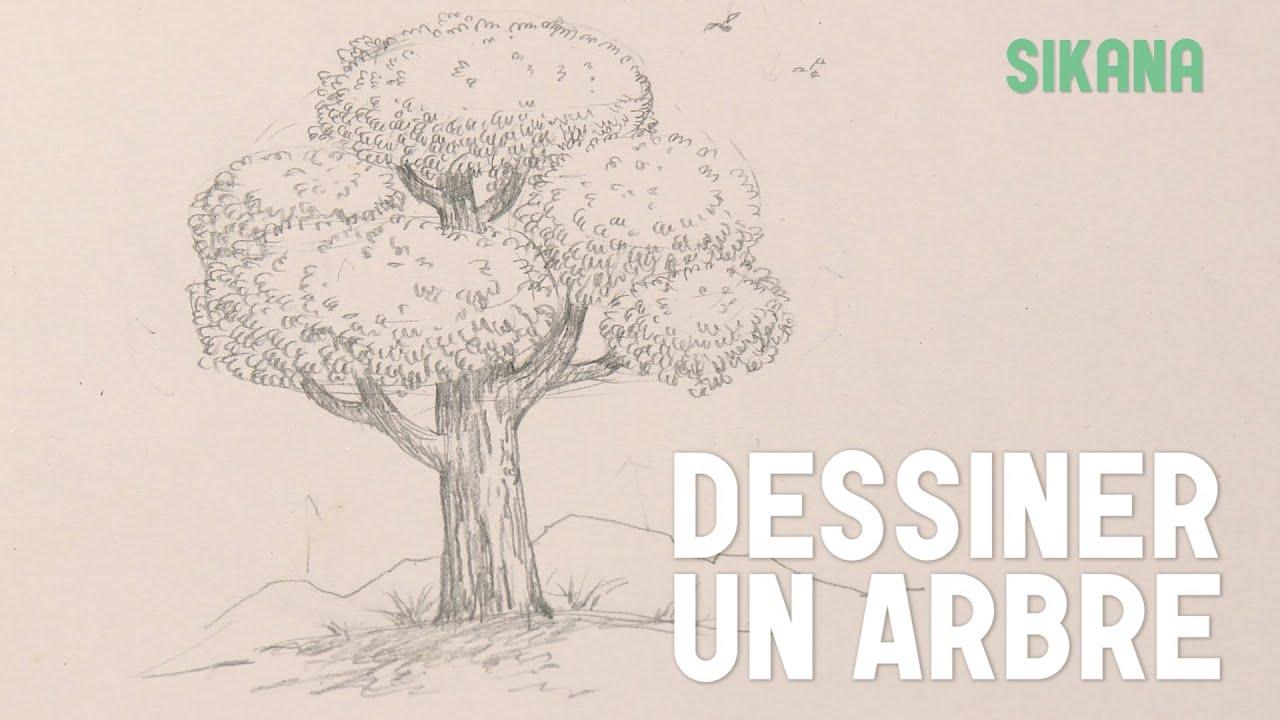 dessin dessiner un arbre hd youtube. Black Bedroom Furniture Sets. Home Design Ideas