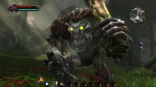 Let's Play Kingdoms of Amalur 14: Troll Hunting