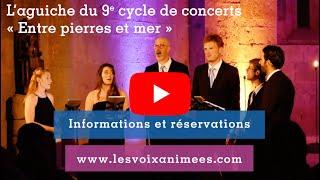 """video L'aguiche du 9e cycle de concerts """"Entre pierres et mer"""" des Voix Animées"""
